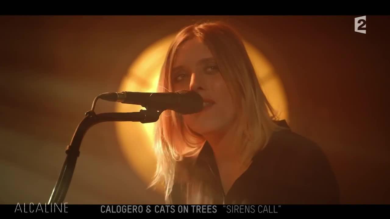 Media Calogero Alcaline le concert